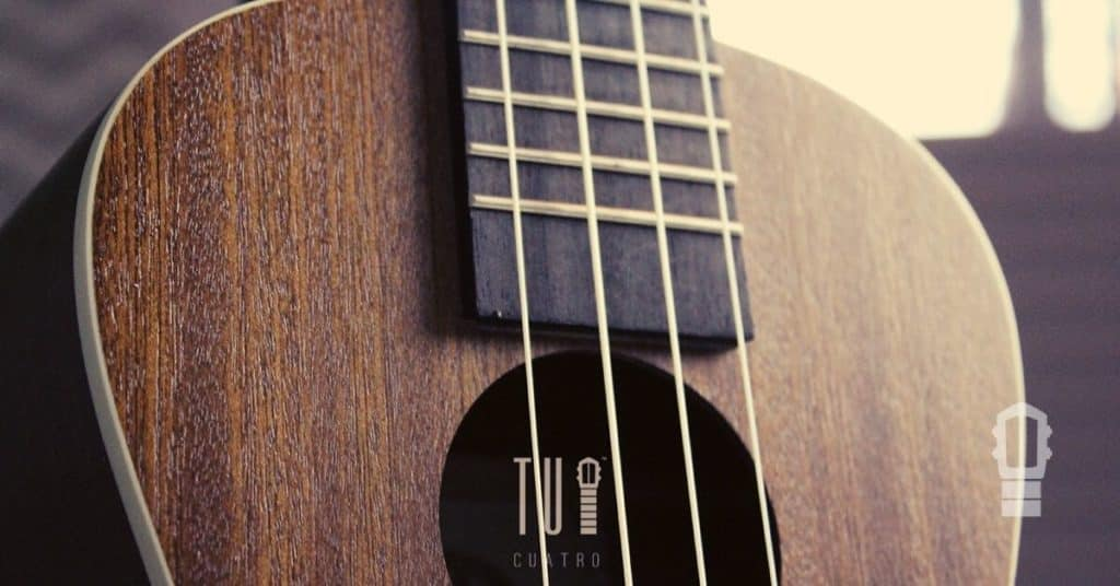 Ukulele Basics Course